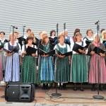 Sopran der Chorgemeinschaft Freistadt bei Musik vom Fass im Brauhof Freistadt